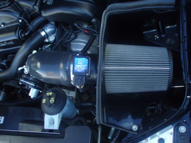 Mustang 2008   14