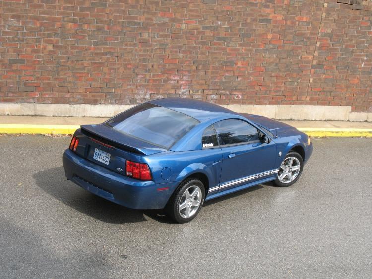 Mustang. 21.