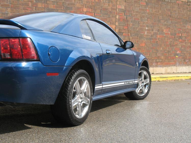Mustang. 23.