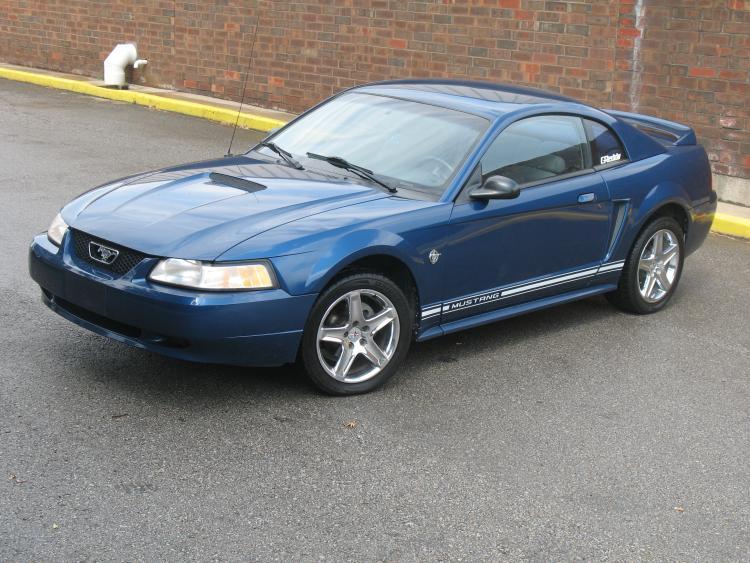 Mustang. 29.