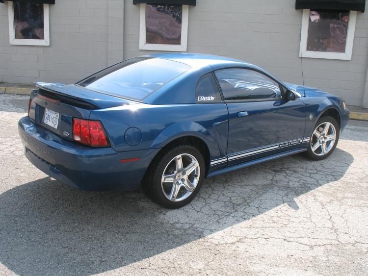 Mustang. 33.