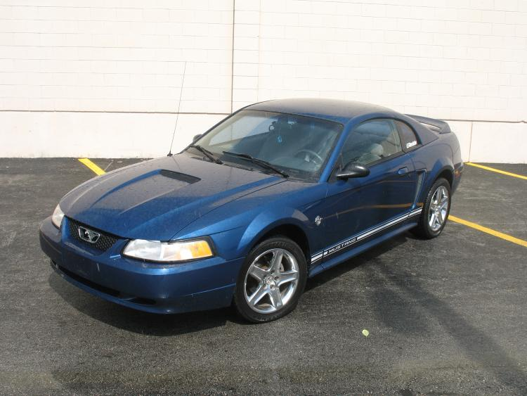 Mustang. 4.