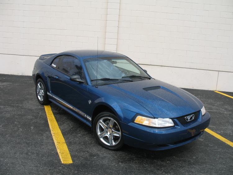 Mustang. 5.