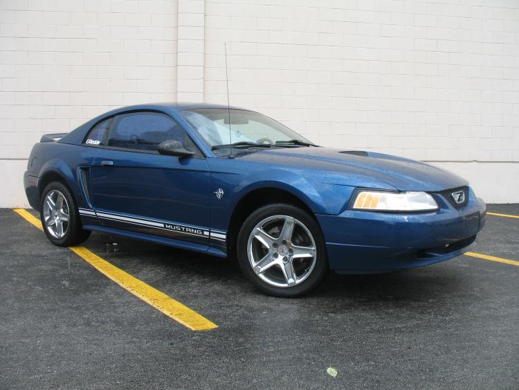 Mustang. 6.