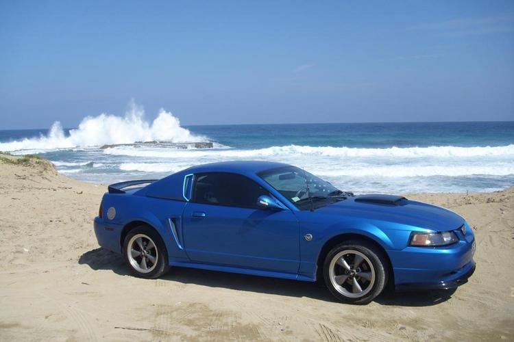 Mustang at beach 3