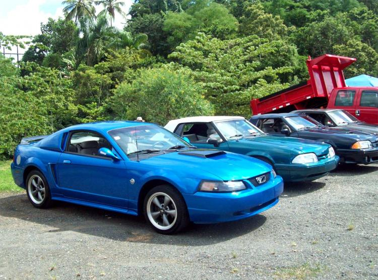 Mustang at show 2422