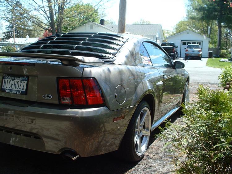 Mustang   Butt Shot