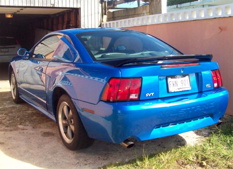 Mustang painted 3