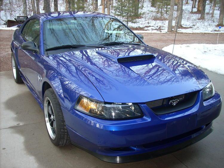 Mustang Pics 008