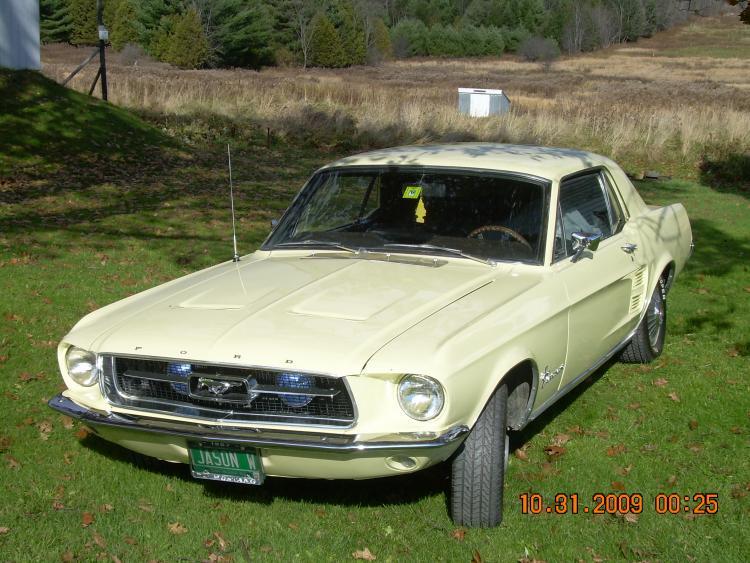 Mustang pics 020