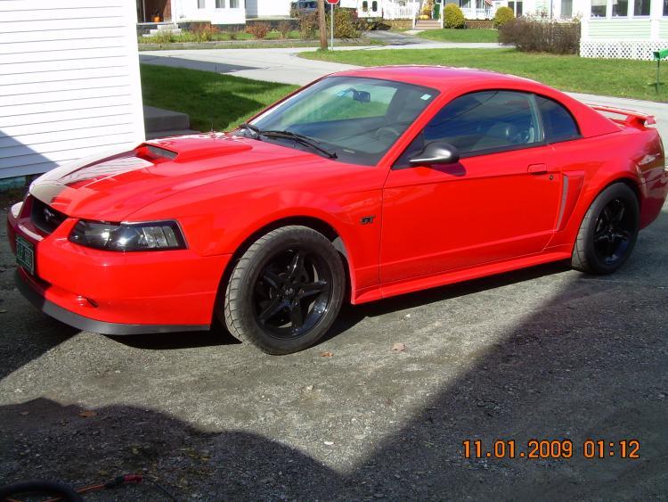 Mustang pics 032