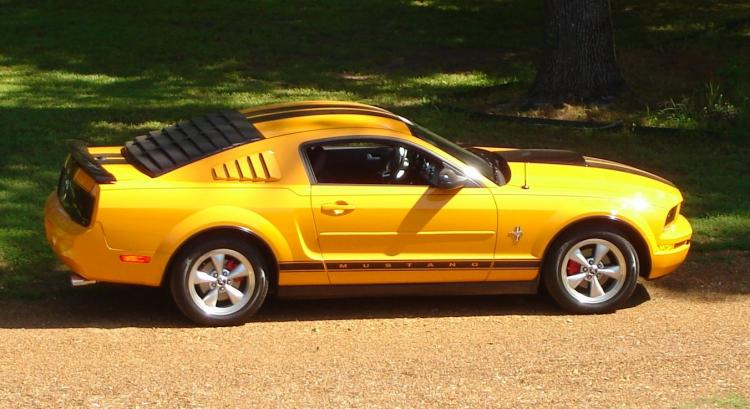 Mustang, right side