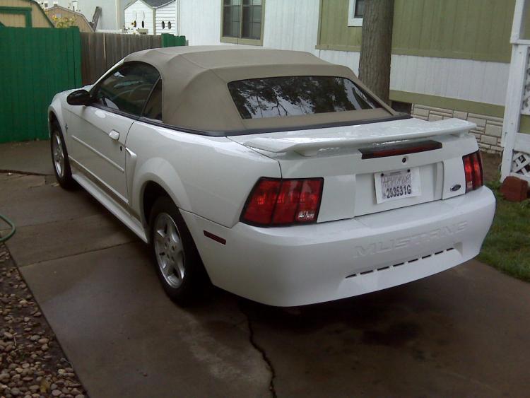 Mustang003