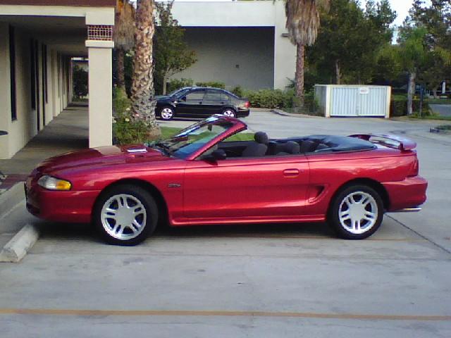 Mustang01