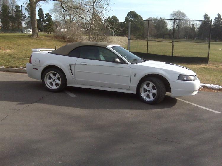 Mustang012