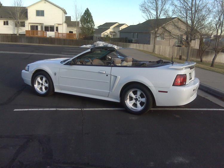 Mustang017