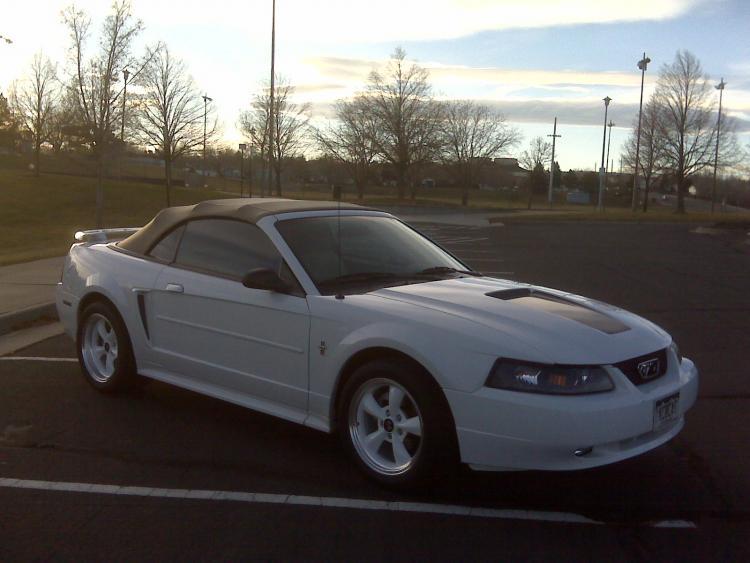 Mustang026