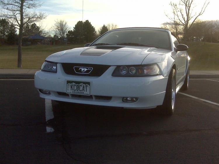 Mustang027