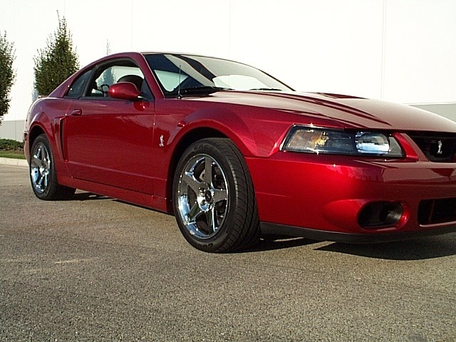 My 04 Redfire SVT Cobra