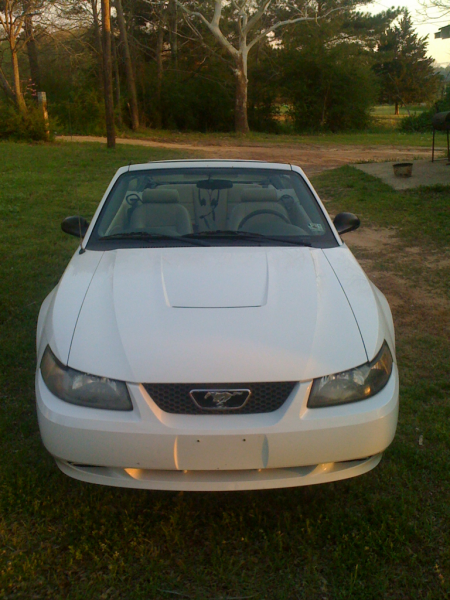 My 04 Stang convertible. Sadly before the wreck. Working now to restore her.