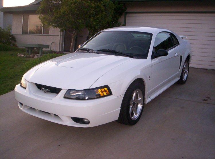 My 2001 Cobra