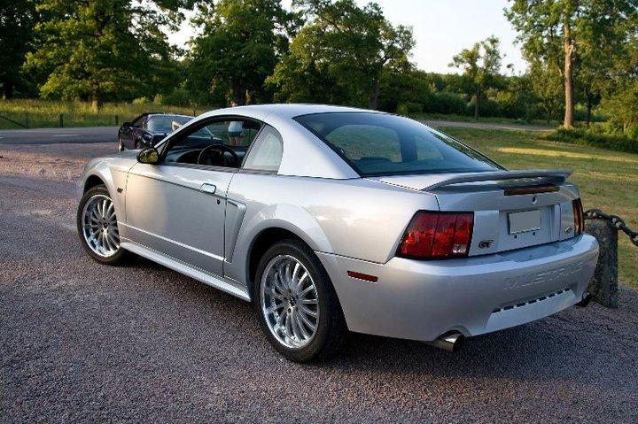 My Mustang 1