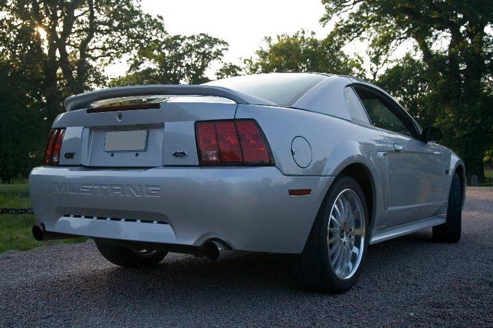 My Mustang 6