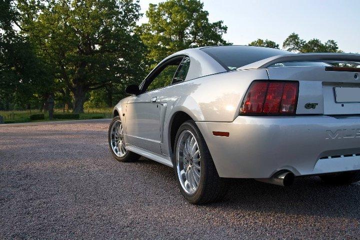 My Mustang 8
