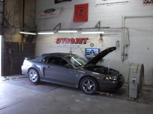 on the dyno...2004 GT Vert...My First Pony!!! RIP...If you see her on the road or know someone that owns her let me know.