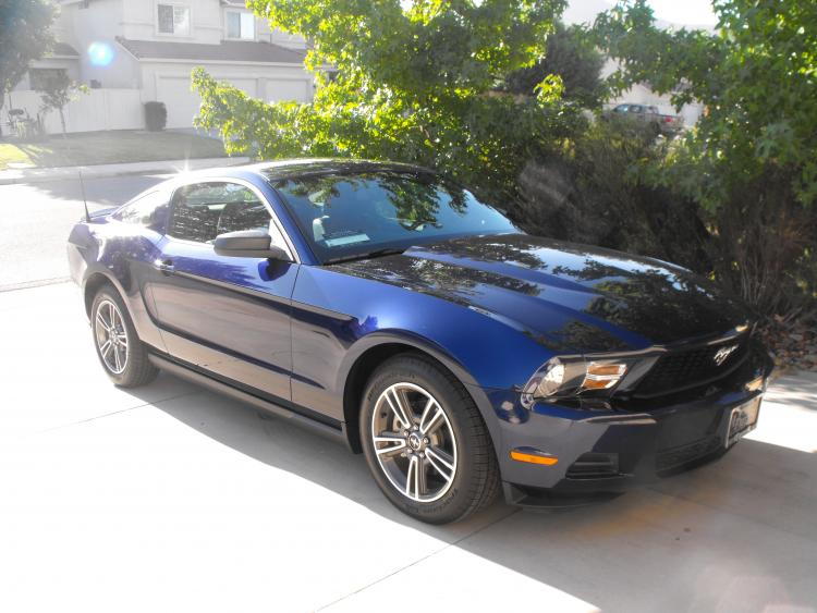 Our 2010 Mustang