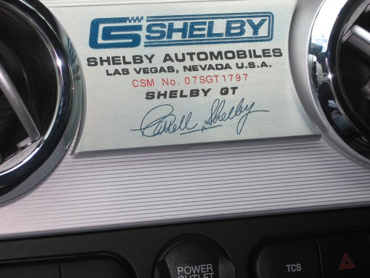 Shelby 009