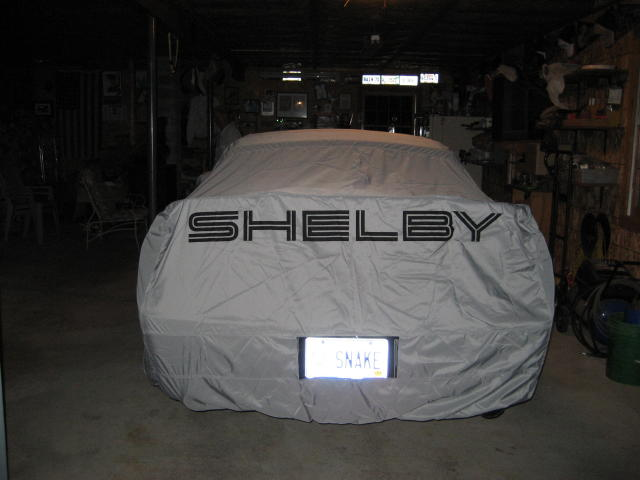 Shelby stored 037