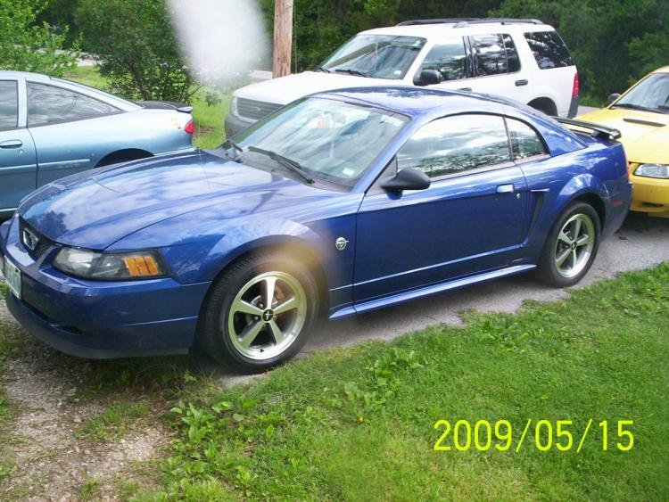 so far heres all ive done to her