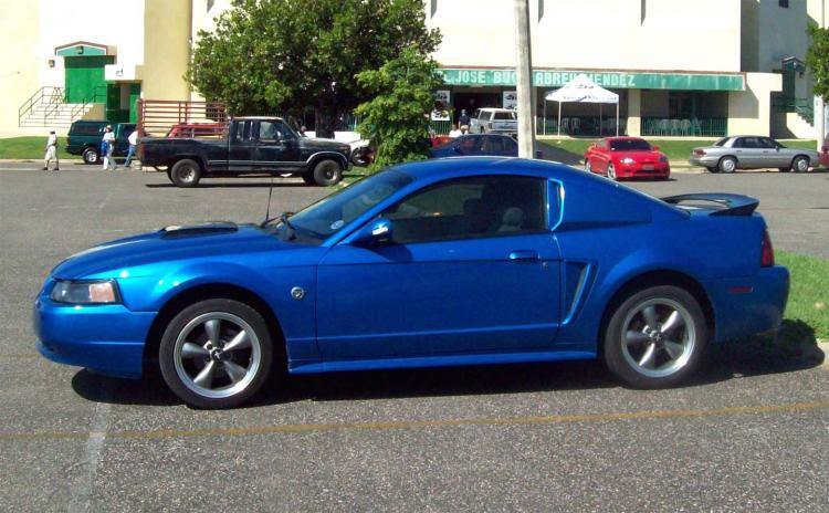 Steve's Mustang 2334
