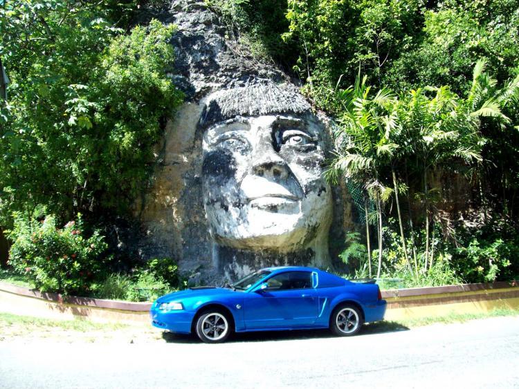 Steve's Mustang 2380