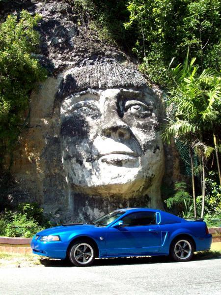 Steve's Mustang 2381