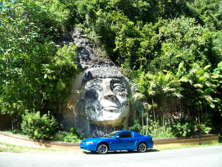 Steve's Mustang 2382