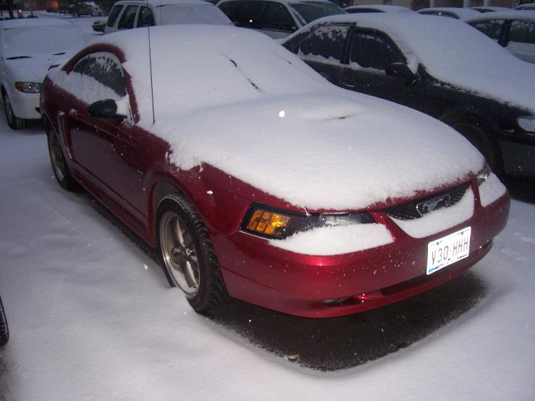 This car had always been a Texas car. No garage to keep it out of the snow in Indiana. 2/2008