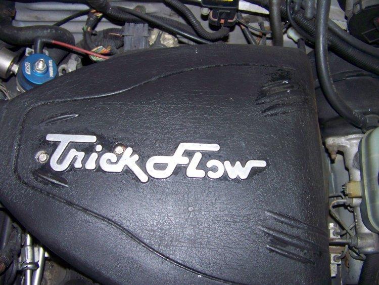 Trick flow upper intake